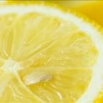 Lemon Jam - uso-privato