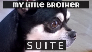 My little brother SUITE