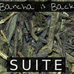 Bancha is Back (SUITE) - uso-privato
