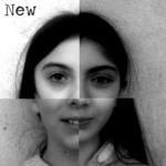 Homologator (02 - The New Order) - uso-privato