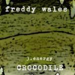 Crocodile (03 - Energy) - uso-privato