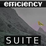 Efficiency (SUITE) - uso-privato