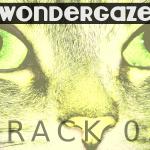 Wondergaze (03) - uso-privato