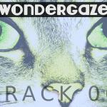 Wondergaze (06) - uso-privato