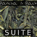 Bancha is Back (SUITE) - uso-privato
