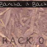 Bancha is Back (01) - uso-privato