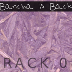Bancha is Back (08) - licenza-pro
