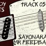 Sayonara Mr Feedback (05) - uso-privato