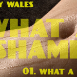 What A Shame (01 - What A Shame) - licenza-pro