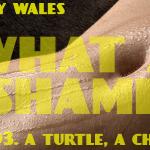 What A Shame (03 - A Turtle, A Chesnut) - uso-privato