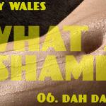 What A Shame (06 - Dah Dah Dah) - uso-privato