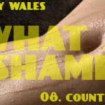 What A Shame (08 - Countryside) - uso-privato