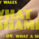 What A Shame (09 - What A Shame 2) - uso-privato
