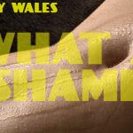 What A Shame (LP) - uso-privato