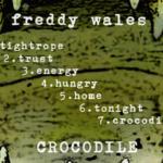 Crocodile (LP) - uso-privato