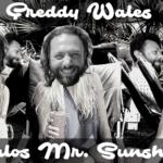 Haloa Mr. Sunshine (LP) - uso-privato